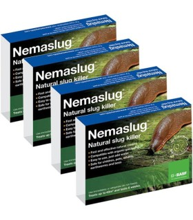 Nemaslug Slug Killer Programme - 24 Week / 40m2