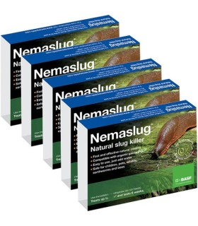 Nemaslug Slug Killer Programme - 30 Week / 100m2