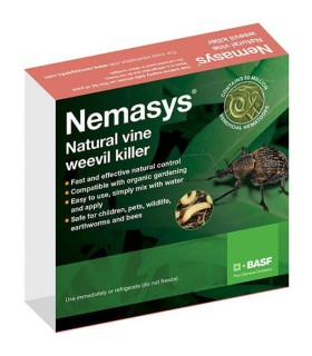 Nemasys Vine Weevil Killer - 100sq.m (Underglass usage)