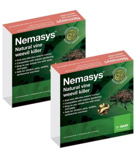 Nemasys Vine Weevil Killer Spring and Autumn - 100m2