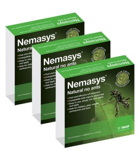 Nemasys No Ants - Programme (12 Weeks) Large(50 Ant Nest Treatment)