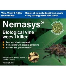 Nemasys Vine Weevil Killer Nematodes - 12sq.m