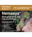 Nemasys Caterpillar, Codling Moth & Gooseberry Sawfly Nematodes - May Despatch