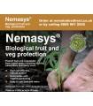 Nemasys Caterpillar, Codling Moth & Gooseberry Sawfly Nemat x3odes - Sept. Despatch