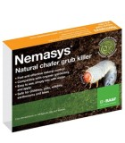 Chafer Grub Killer Nematodes