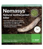 Leatherjacket Killer Nematodes